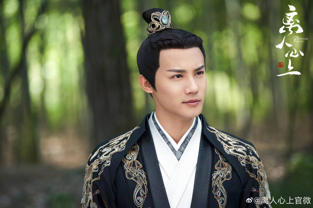 The Sleepless Princess Summary - C-Drama Love - Show Summary
