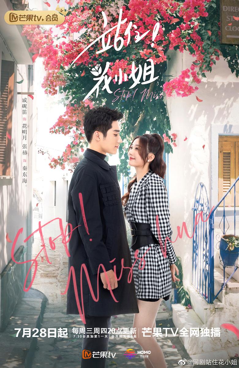 Stop Miss Hua Chinese Drama Poster