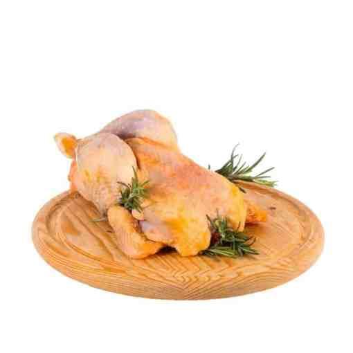 gallina da brodo 1