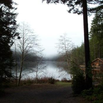 Cedar and Sound Photos