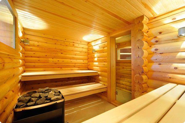 Indoor Water Garden Ideas