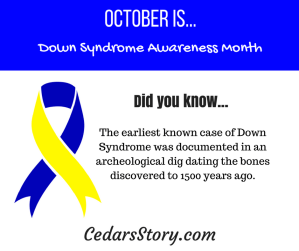 October Down Syndrome Awareness Facts #17