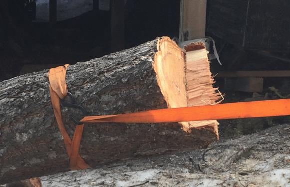 Strap on log