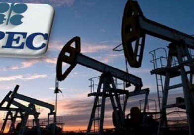 OPEC Countries Increase Output to 31.87m bpd in May – Report