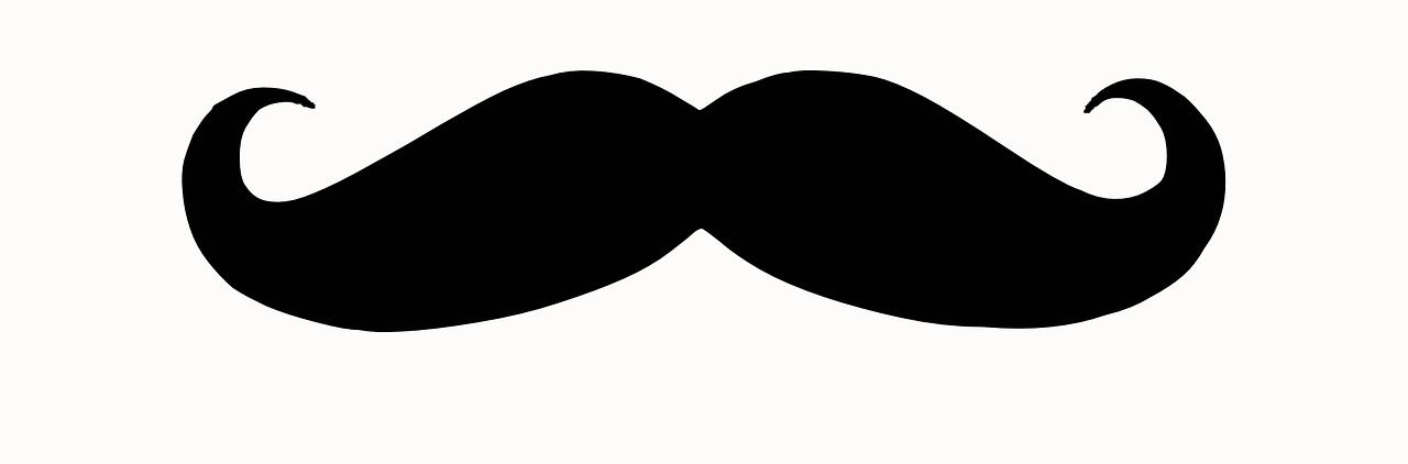 Movember czyli Wąstopad