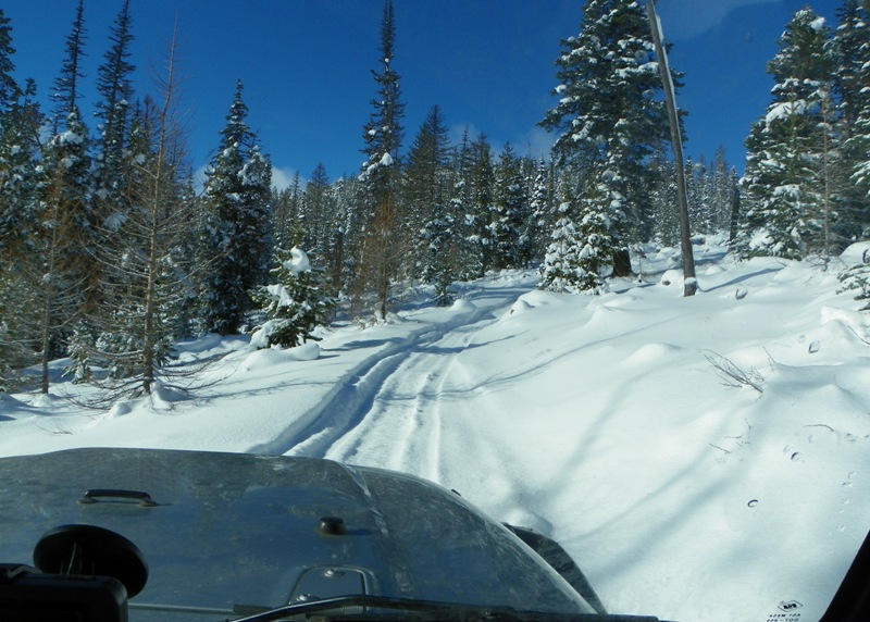 Photos: EWOR Thanksgiving 4x4 Run at the Ahtanum State Forest 20