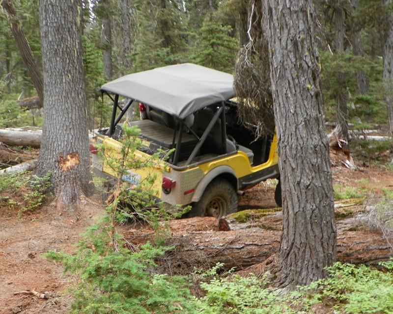 Photos: Yellow Jeep Run - Little Rattlesnake 28