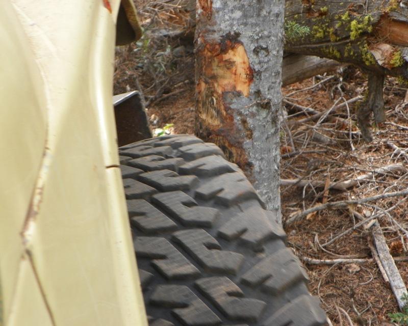 Photos: Yellow Jeep Run - Little Rattlesnake 42