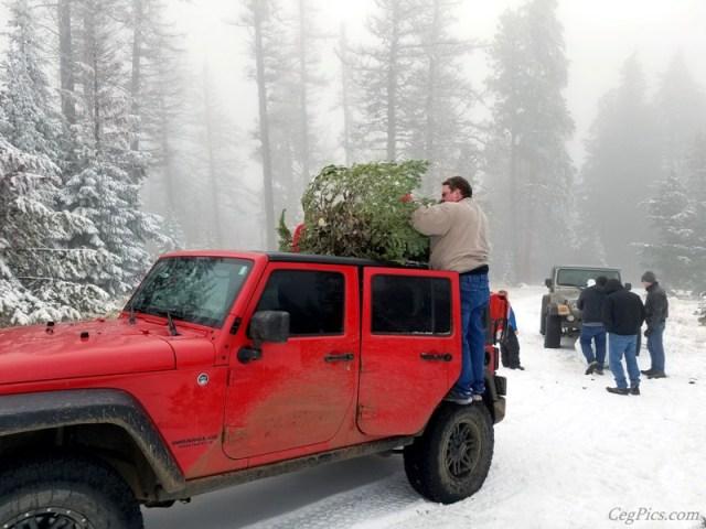 Christmas Tree Jeeping