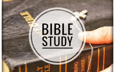 Bible Study – 'Storytelling in the Bible'