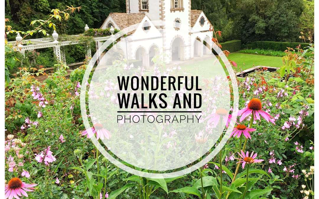 Wonderful Walks & Photography