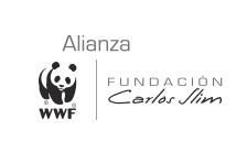 logo_alianza_01