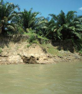 4-3_calidad-ecosistemas-acuaticos_sublacantun
