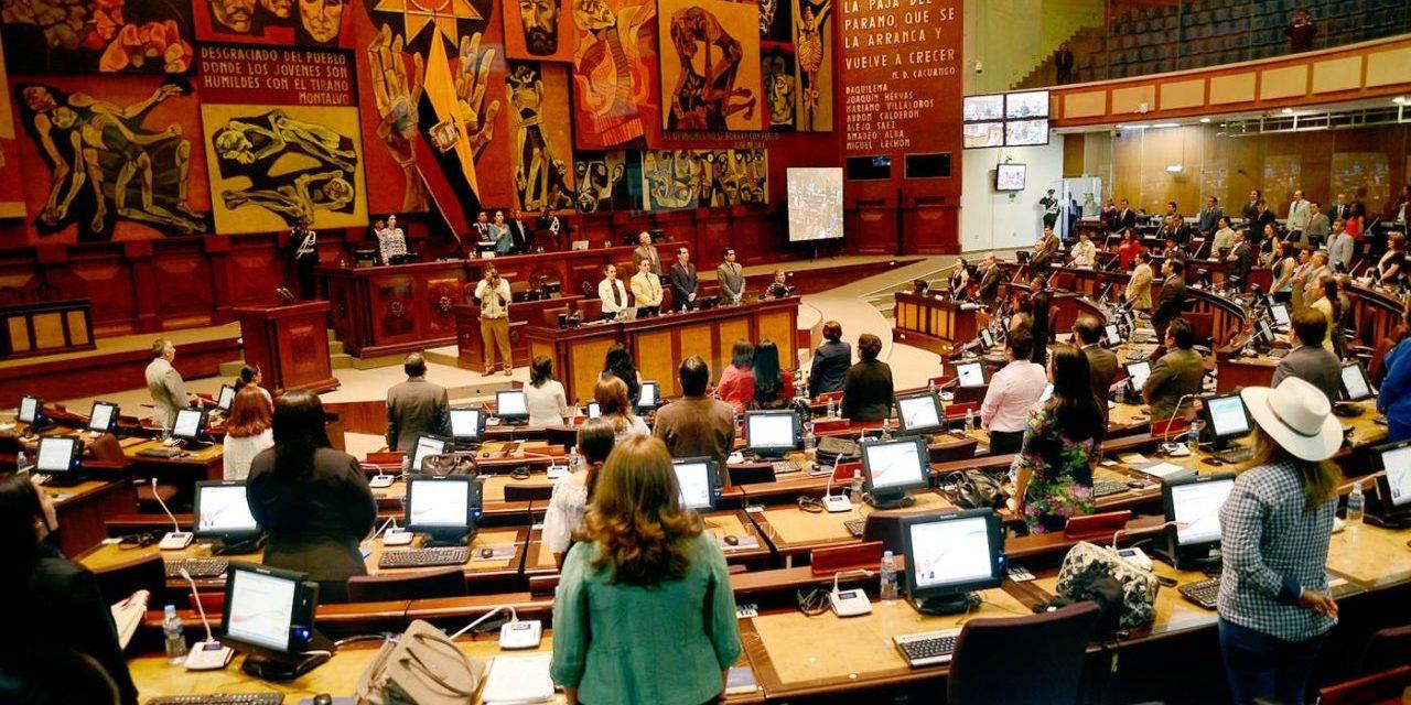 Apuntes sobre las Enmiendas Constitucionales de Ecuador (Por Gisela Brito y Florencia Pagliarone)