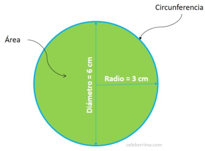 Ejemplo Fórmula área De Un Círculo Con Radio Y Diámetro Celebérrima Com