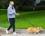 Joe Jonas e Sophie Turner tengono il passo con i loro Dog Walks