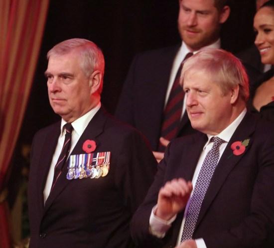 (LR) Princess Anne, Princess Royal, Camilla, Duchess of Cornwall, Prince Andrew, Duke of York, Prince Harry, Duke of Sussex, Meghan, Duchess of Sussex and Prime Minister Boris Johnson attend the annual Royal British Legion Festival of Remembrance at the