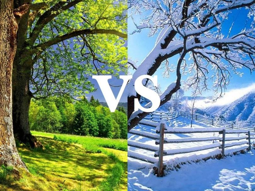 Should we get Married in Summer or Winter? - The Celebrants Network Inc -  BLOG