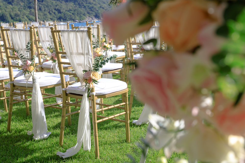 tiffany wedding chairs target video game chair celebrate entertainment hire sydney
