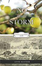 No Small Storm