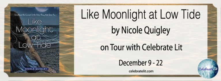 like moonlight at low tide FB cover copy