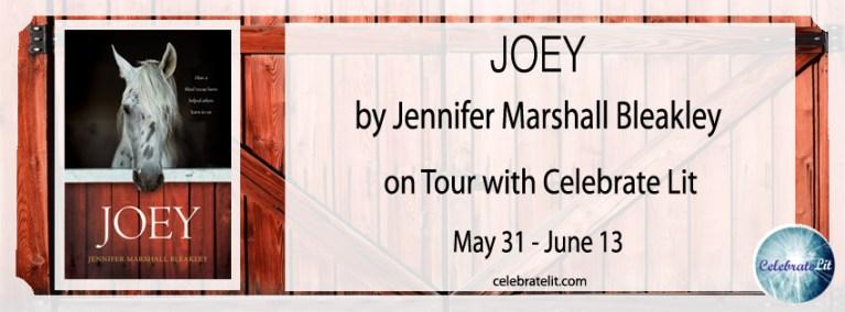 Joey celebration tour FB banner copy