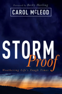storm Proof cover