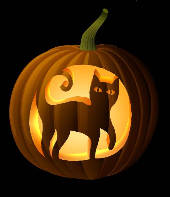 Black cat pumpkin carving stencil celebrating halloween
