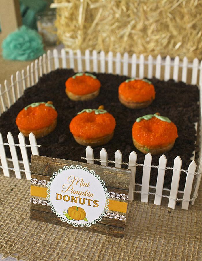 "Little Pumpkin Rustic Fall Baby Shower Ideas - Mini Donuts in Oreo ""Dirt"""