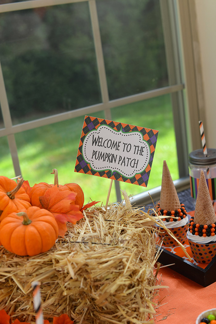 Party Ideas Not So Spooky Halloween - Pumpkin Patch Sign