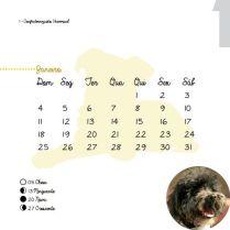 Calendario_2015-4
