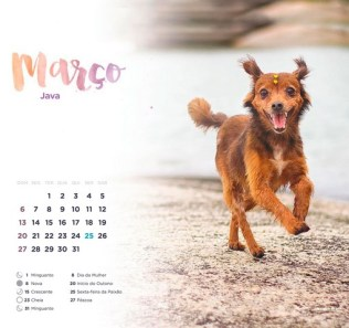Marco_Java2