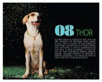 Thor-Agosto2014-1