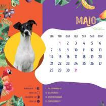 Calendario-201813