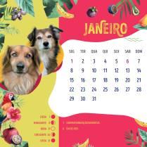 Calendario-20185