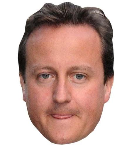 A Cardboard Celebrity David Cameron Big Head