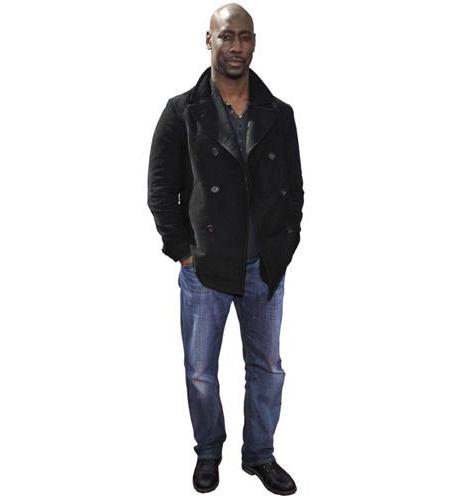 A Lifesize Cardboard Cutout of D B Woodside wearing jeans