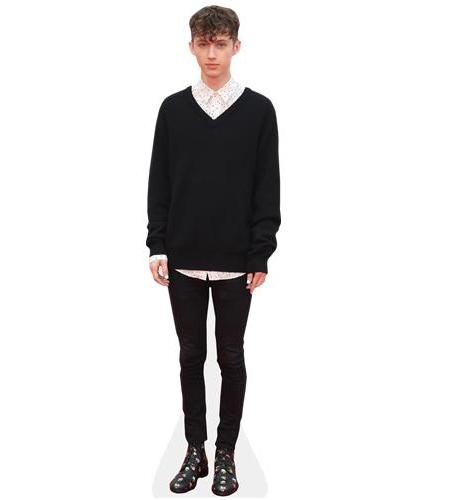 A Lifesize Cardboard Cutout of Troye Sivan wearing a jumper