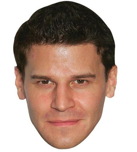 A Cardboard Celebrity Big Head of David Boreanaz