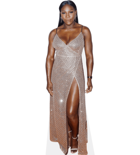 Serena Williams (Sparkly Dress)