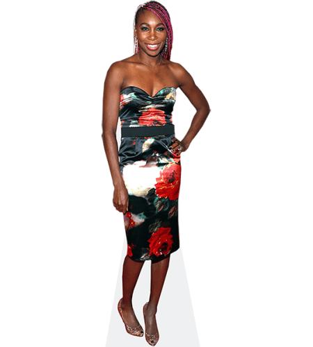 Venus Williams (Floral Dress)