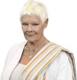 Judi Dench (White) Cardboard Buddy Cutout
