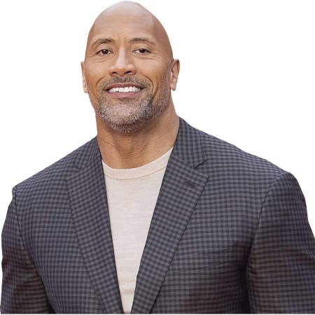 """Dwayne """"The Rock"""" Johnson (Checked Suit) Cardboard"""