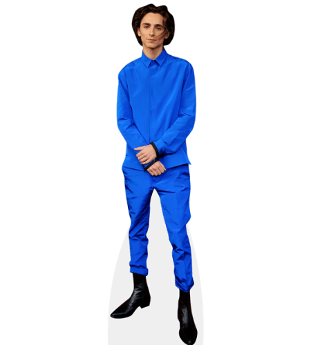 Timothée Chalamet (Blue Suit)