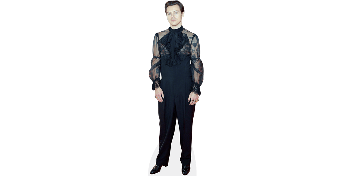Black Outfit Harry Styles Life Size Cutout Artwork Home