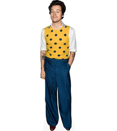 Harry Styles (Yellow Top)