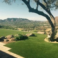 Phoenix area artificial grass landscaping.