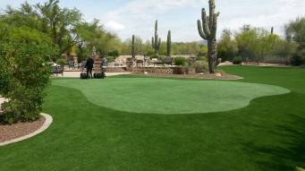 Arizona backyard artificial grass putting green