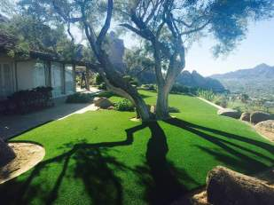 paradise-valley-artificial-grass