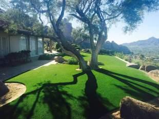 paradise-valley-artificial-grass
